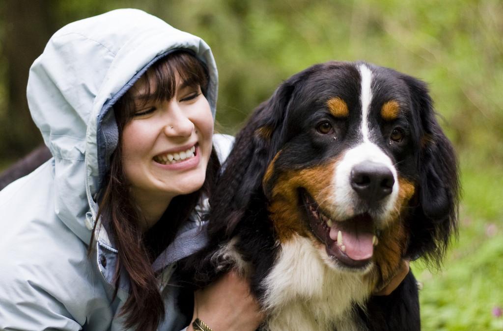 Come creare un rapporto con il cane?