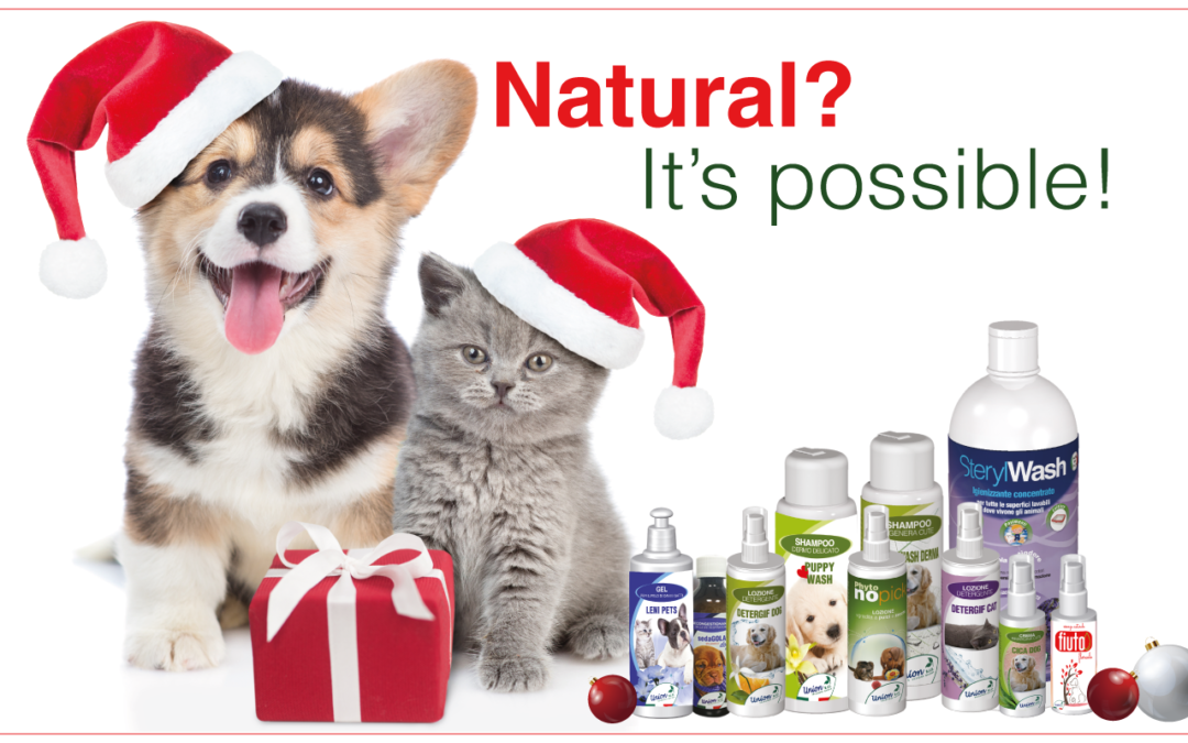 Christmas: here some dogs and cats gift ideas