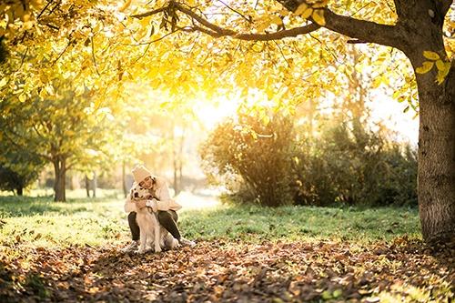 Cani e gatti in Autunno: qualche consiglio
